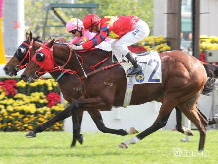 THE GURU LOOKS BACK AT NEW YEAR'S DAY AT SHATIN 9