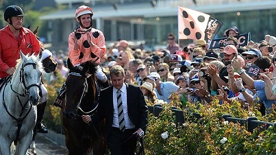 THE MIRACLE THAT IS BLACK CAVIAR 4