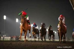 FIREWORKS IN DUBAI 9