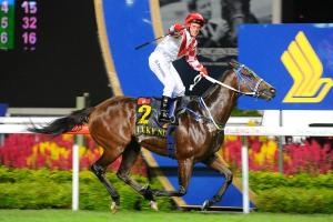 THE ROLE OF RACING IN THE MARKETING OF HONG KONG 14