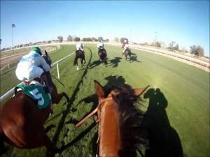 RICHARD HUGHES AND NEW WAYS OF LOOKING AT HORSE RACING 5