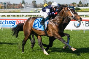 THE GREAT, THE LATE AND GOING TO THE DOGS 29