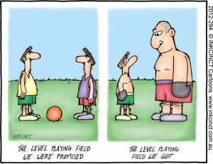 THE LEVEL PLAYING FIELD ISSUE 13