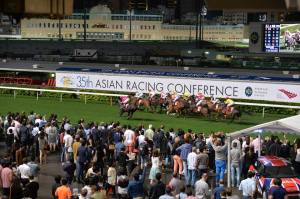 THE CHANGING FACE OF HORSE RACING 4