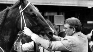 THE CHANGING FACE OF HORSE RACING 7