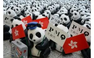 pmq pandas
