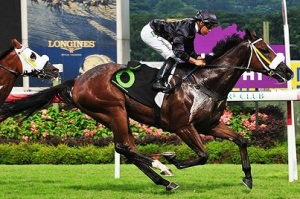 A DAY AT THE HK RACES WITH FAST TRACK 16
