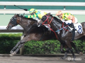 A DAY AT THE HK RACES WITH FAST TRACK 27