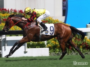 A DAY AT THE HK RACES WITH FAST TRACK 40