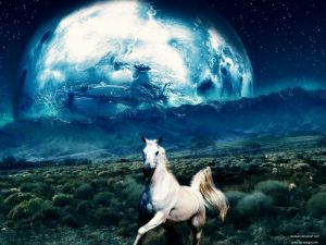 THE BEAUTY OF HORSE POWER 4