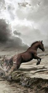 THE BEAUTY OF HORSE POWER‏ 2