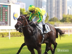 THE FAST TRACKER HOPES FOR A DIVINE SUNDAY 9