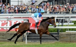 THE MELBOURNE CUP 15