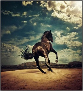 THE BEAUTY OF HORSEPOWER BY KARL GUSTAFFSON 1