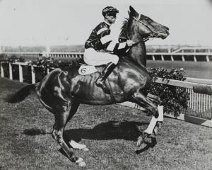 A HORSE RACING HALL OF FAME 10