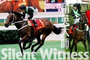HONG KONG HERO AND ROCK STAR HORSE 1