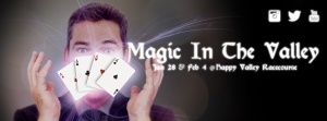 MAGIC IN THE VALLEY 3d