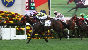 THE MAGIC OF JOAO MOREIRA 17