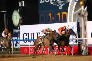From The Dubai World Cup Twitterverse 14b
