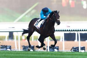 From The Dubai World Cup Twitterverse 4b