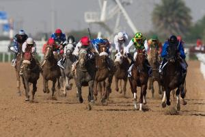 From The Dubai World Cup Twitterverse 6b