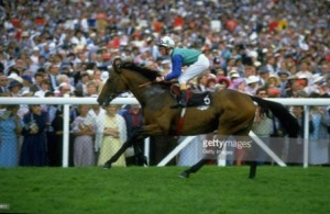 Gildoran Royal Ascot‏