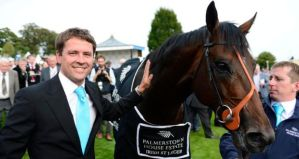 Brown Panther1