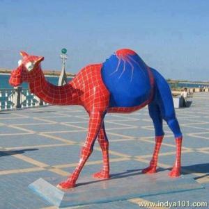 Spider Camel