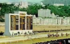 HAPPY VALLEY AND HORSES FOR COURSES 2