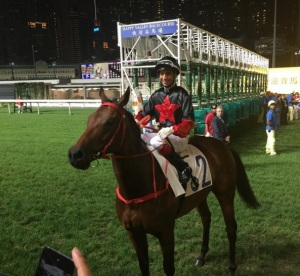 HAPPY VALLEY AND HORSES FOR COURSES 7