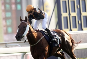 feel-free-to-add-to-our-hkir-top-of-the-pops-14