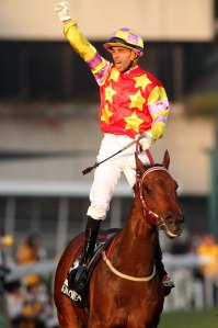 feel-free-to-add-to-our-hkir-top-of-the-pops-15